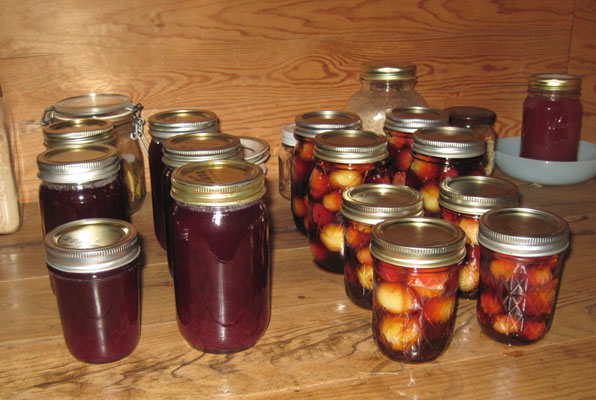 spiced crabapples and grape juice